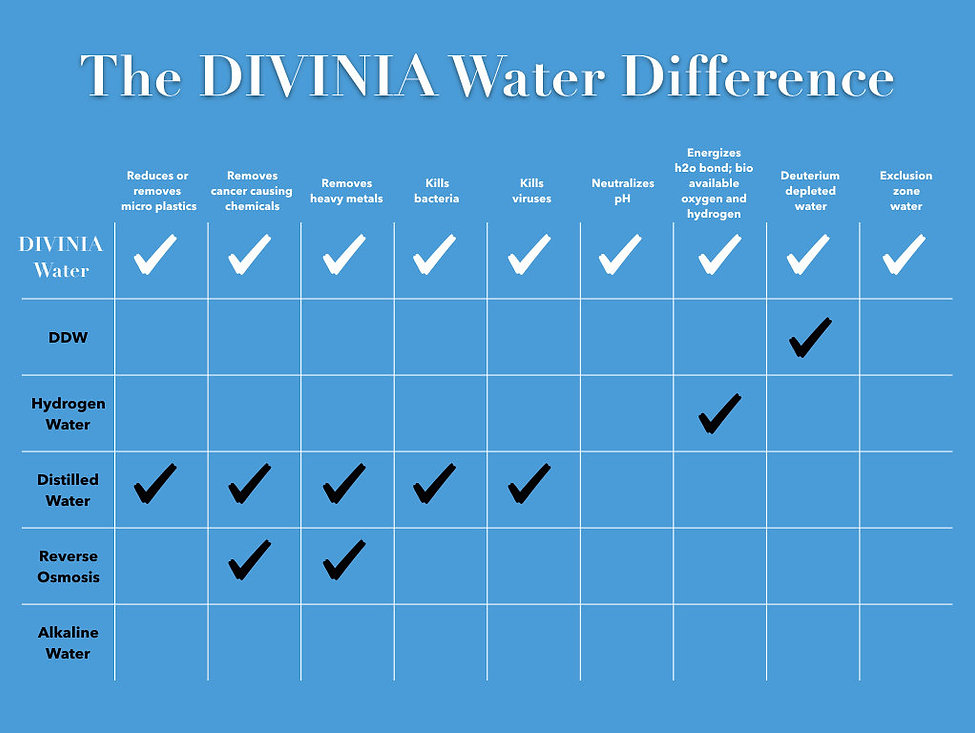 Divinia Difference Chart.jpeg