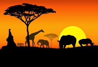 Tanzania, África Nuestros orígenes