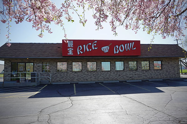 Rice Bowl_Fixed.jpg