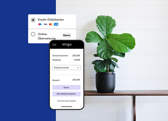 Online-Zahlungen sicher annehmen auf dem Mobiltelefon für einen Online-Shop von Wi