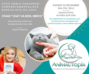 STAGE _CHAT VA BIEN - Sonia Paeleman - A