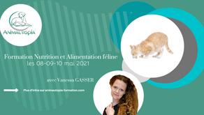 Nutrition et Alimentation féline - Visioconférence - 08-09-10 mai 2021