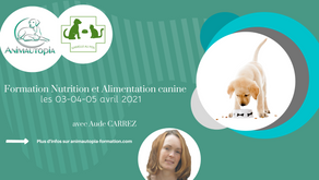 Formation Nutrition et Alimentation canine - 03-04-05 avril 2021 - Visioconférence