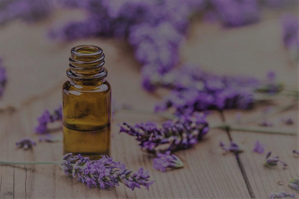 oil_from_lavender_vignette_edited_edited