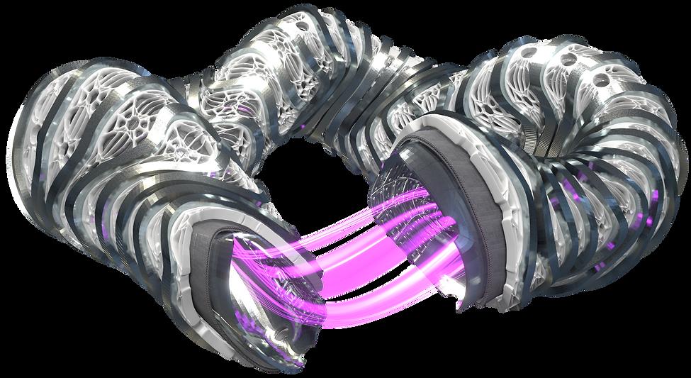 Stellarator_Magnets&Plasma_Human-Ref_005