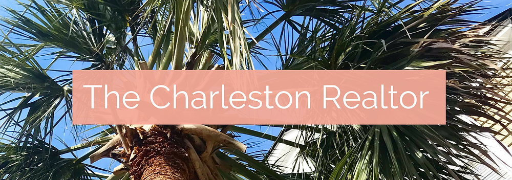 The Charleston Realtor