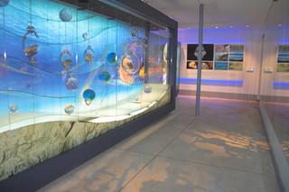 sterkfontein caves museum