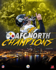 AFC North Champs 2016 LARGE.jpg