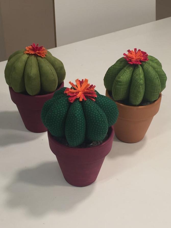 Més cactus!