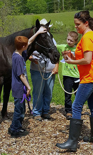 equine assisted learning_300x500.jpg