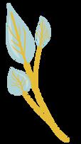 logo 4-2-01.png