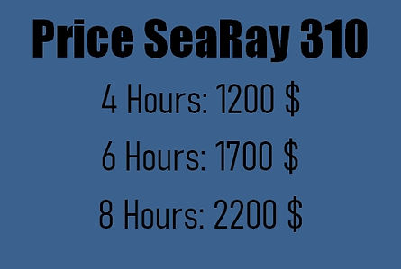 SeaRay310.jpg