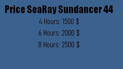 SeaRay44.jpg