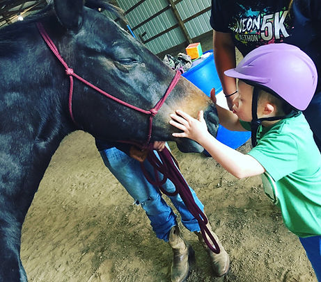 A child kissing a horse's nose.