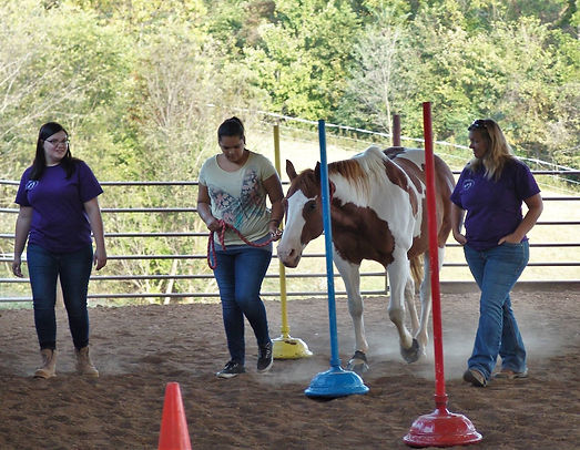 A client recieving equine-assisted therapy.