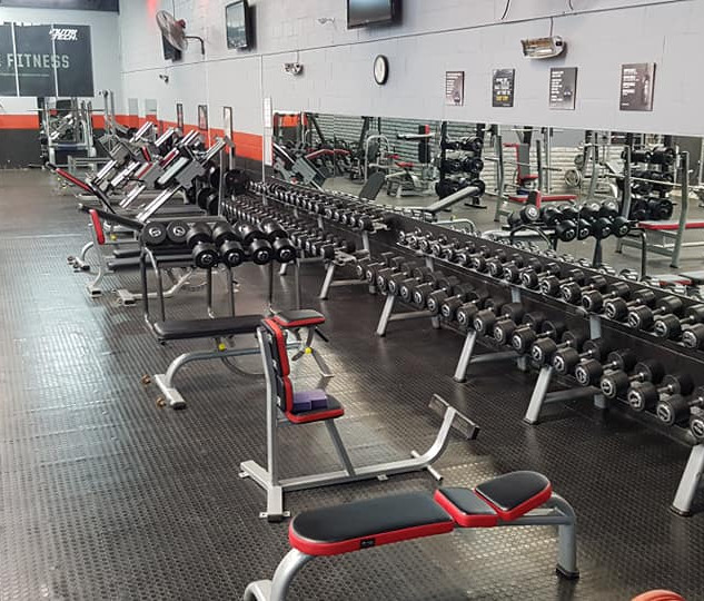 FREE WEIGHT SECTION AND LEG SECTION