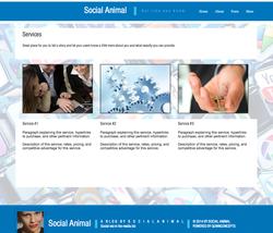 6 Social Media - Services.png