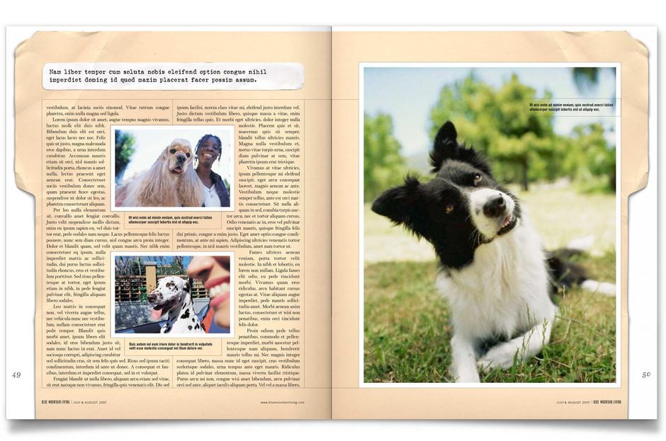 editorial-6.jpg