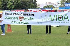 viavida3.jpg
