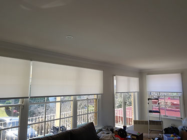 Real Blinds - Light Filter Blinds in Frenches Forest
