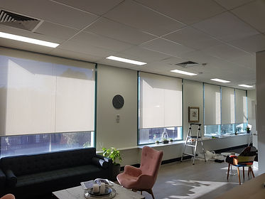 Chatswood Rose-Hip Vital Blinds | Real B