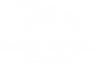 Predator Armor, Plate Carrier, Body Armor, Body Armor Plates