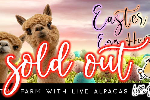 SOLD OUT: Easter Egg Hunt with Alpacas!