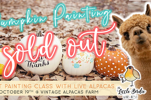 SOLD OUT: Adult Pumpkin Painting with Live Alpacas
