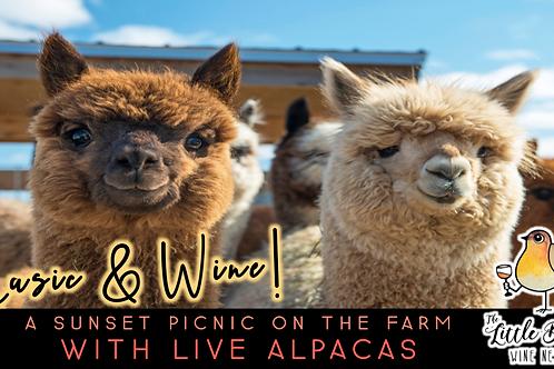 Music & Wine | Sunset Picnic with Alpacas