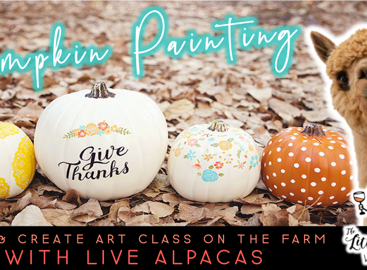 Pumpkin Painting with Alpacas (10/19 @ 1pm)