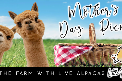SOLD OUT: Mother's Day Picnic with Alpacas!