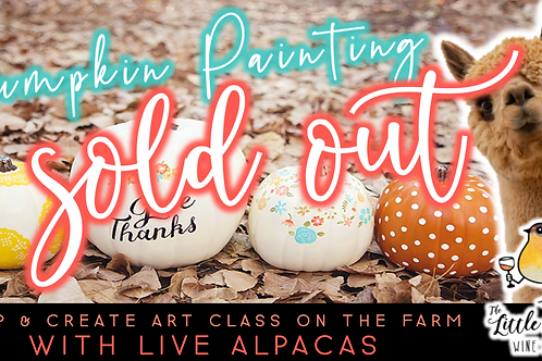 SOLD OUT: Pumpkin Painting with Alpacas (10/17 @ 1pm)