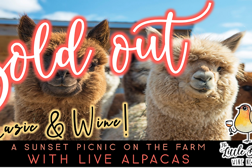 SOLD OUT: Music & Wine   Sunset Picnic with Alpacas