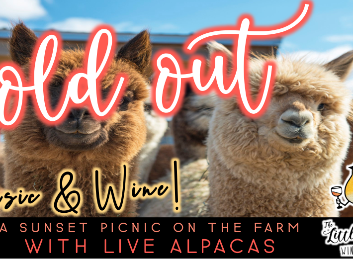 SOLD OUT: Music & Wine | Sunset Picnic with Alpacas