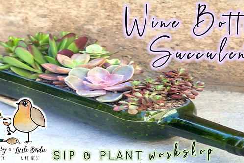Wine Bottle Succulents Sip & Plant Workshop (4/1 @ 6pm)