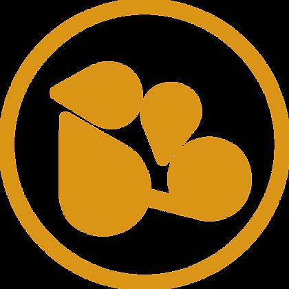 Agnes logo-20.png