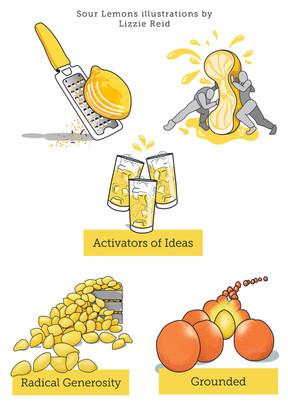 Sour Lemons values and services