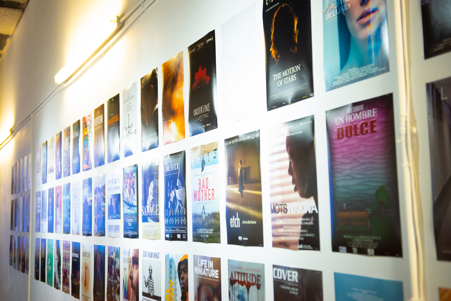 Wall of posters from entries to the Bolton Film Festival 2019