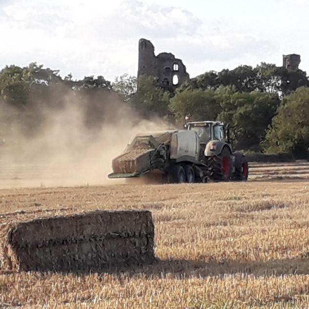 Harvest3