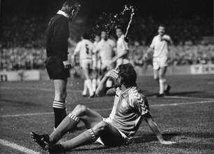Danmark/Wales 1987