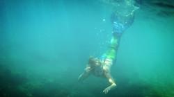 Professional Mermaid Performer