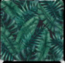 Tropicalbackdrops.png