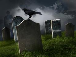 13 Spooky Reads!