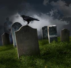 Death & Rebirth