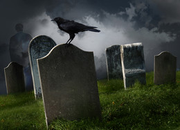 Qualtrics & SurveyMonkey: A Halloween IPO Tale