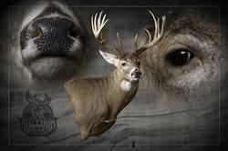 Wall Pedestal-Iowa Deer