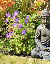 Brook Cottage - Garden 6 - Buddha.JPG