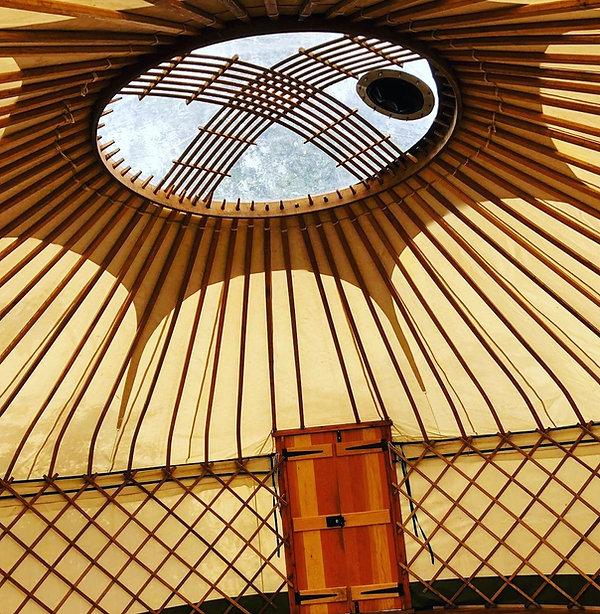 Yurt up.jpg