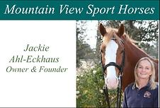 Mountain View Sport Horses