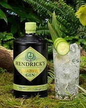 Hendricks-Amazonia-Gin-and-Tonic--scaled